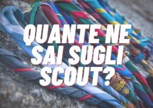 Sondaggio - scout